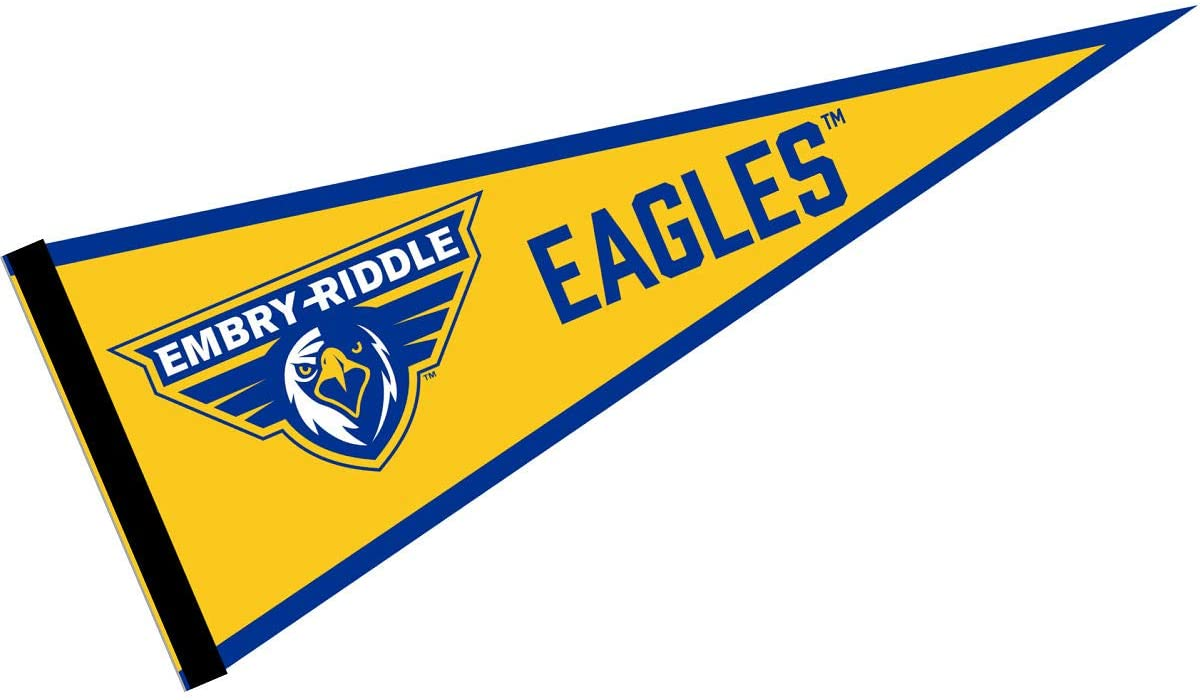 embry-riddle-flag.jpg