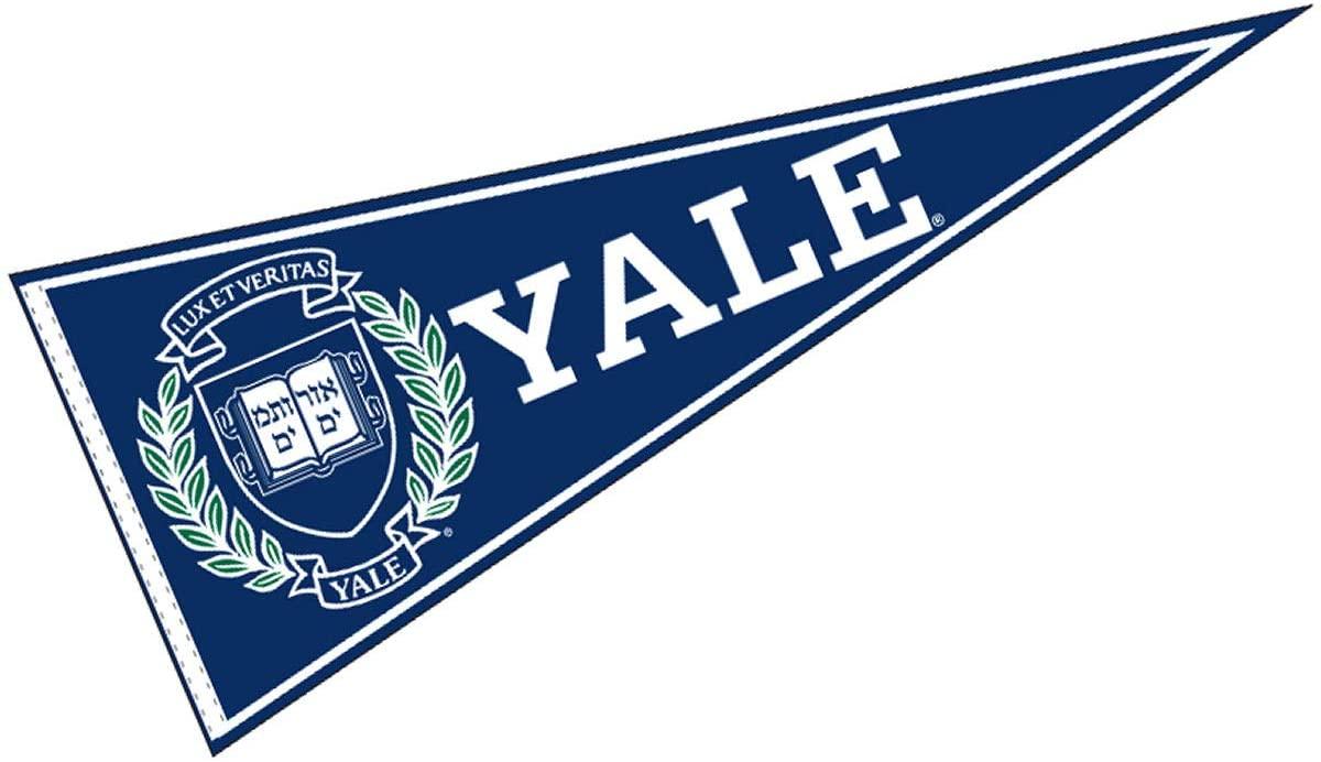 yale-flag.jpg